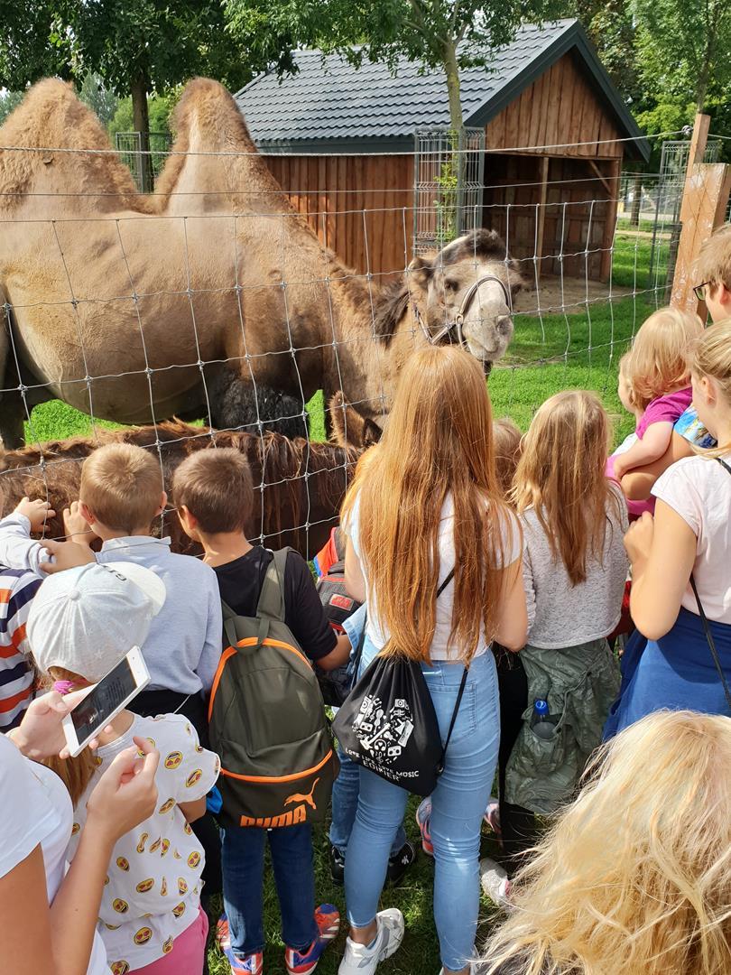 w-zoo-jest-super-12-08-2019-r